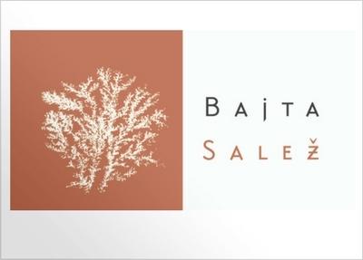 Bajta Salez