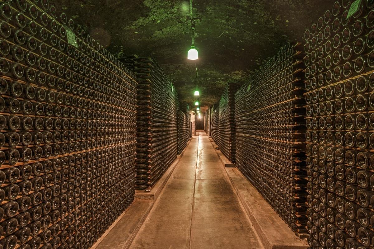 L'equilibrio dei vini marchigiani